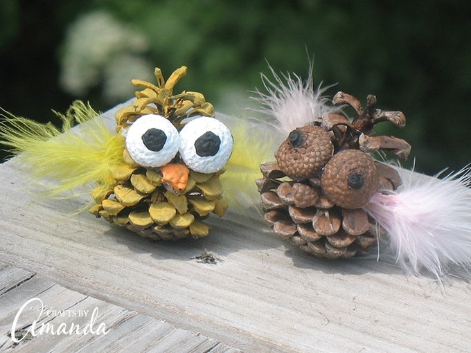 With the end of school comes the beginning of summer. With summer comes summer camp for some families. Whether these cute little pinecone owls are made as a summer camp craft or just something fun for the kids to do on summer break, they're adorable and will look great perched in your child's bedroom or bunk.