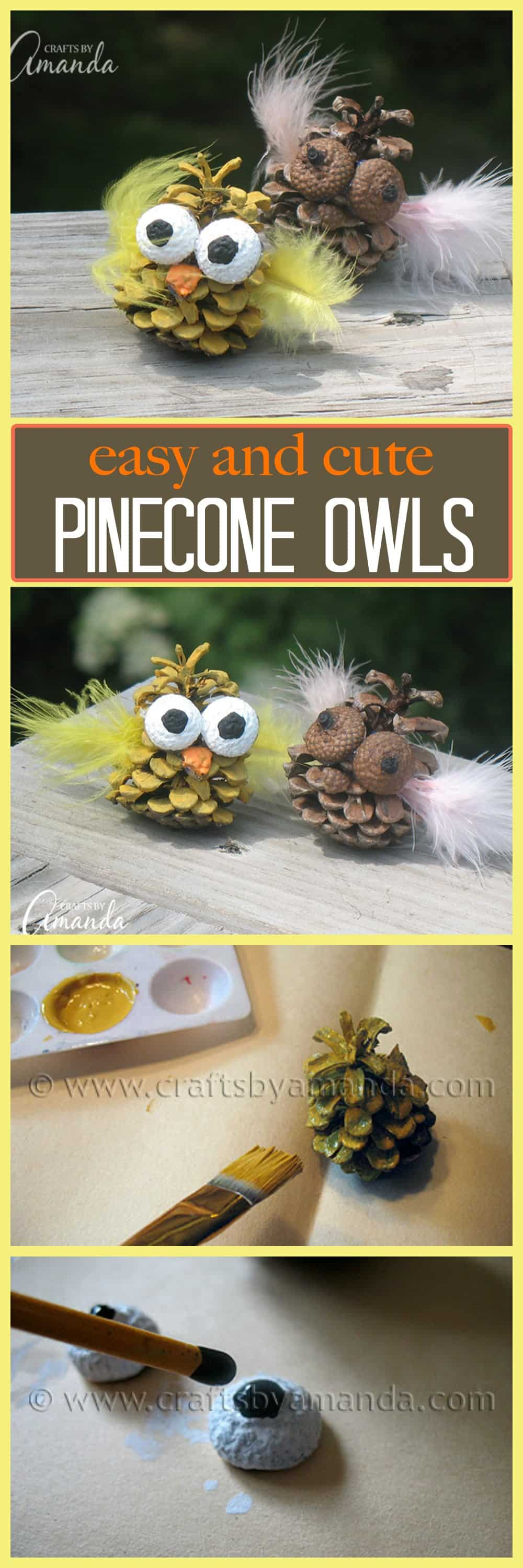 These pinecone owls are something fun for the kids to do on summer break, they're adorable and will look great perched in your child's bedroom or bunk.