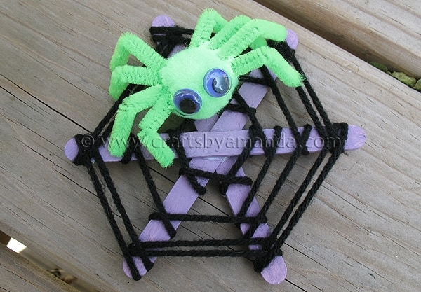 Craft Stick Spider Web