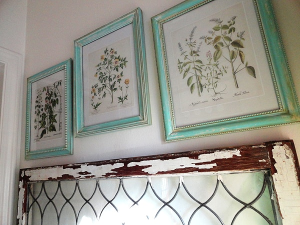 Aged Framed and Botanical Prints
