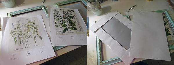 Aged Frames with Botanical Prints