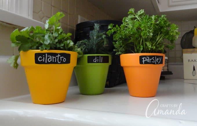 Chalkboard Herb Pots Tutorial