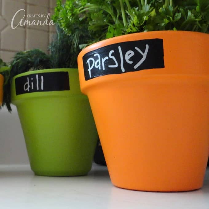 Chalkboard Herb Pots, parsley and dill