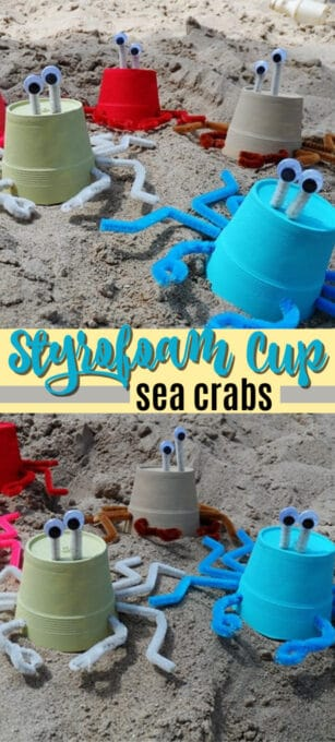 styrofoam cup sea crabs pin image