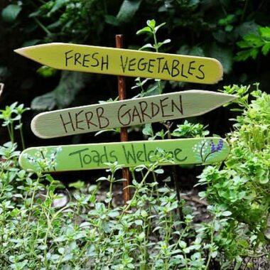 Herb Garden Sign: Toads Welcome CraftsbyAmanda.com