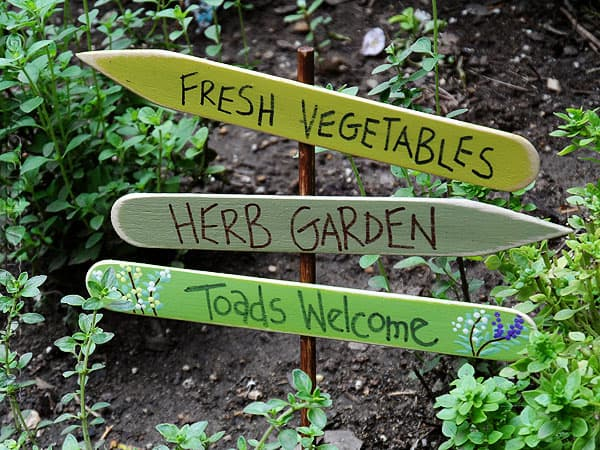 herb garden sign toads wel e   crafts by amanda