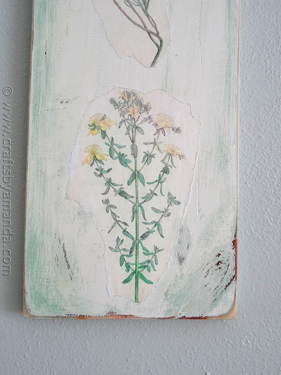 Vintage Wildflowers on Wood by CraftsbyAmanda.com @amandaformaro