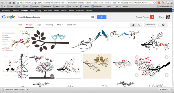 love birds on a branch google image results