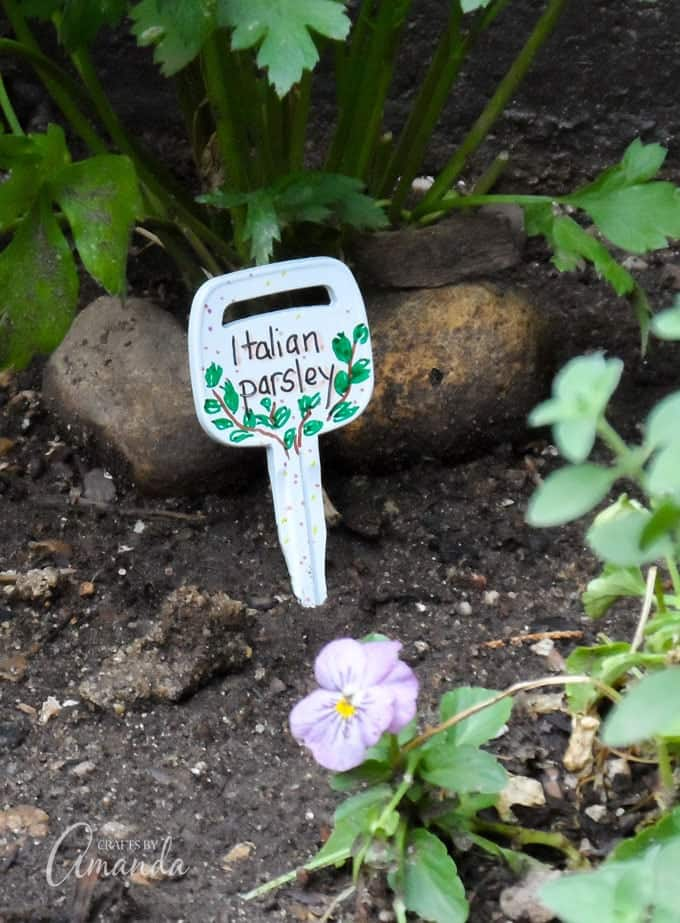 Recycled Key Garden Markers- Italian Parsley