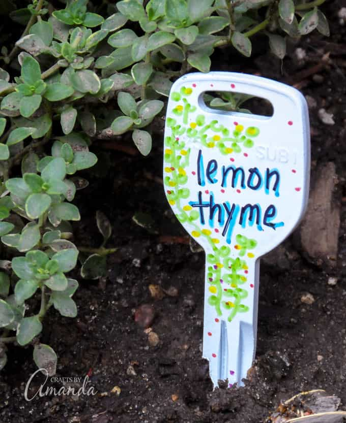 Recycled Key Garden Markers Lemon Thyme