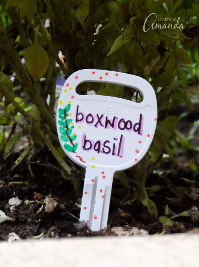 Recycled Key Garden Markers Boxwood Basil