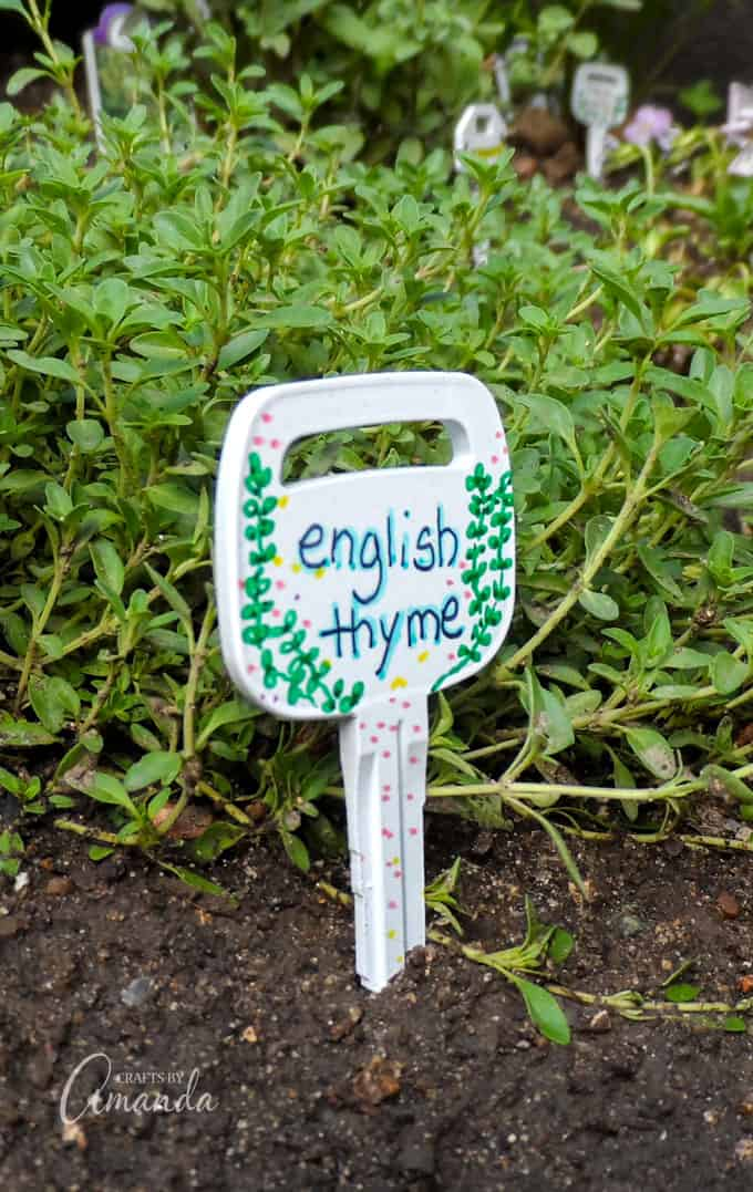 Recycled Key Garden Markers- English Thyme