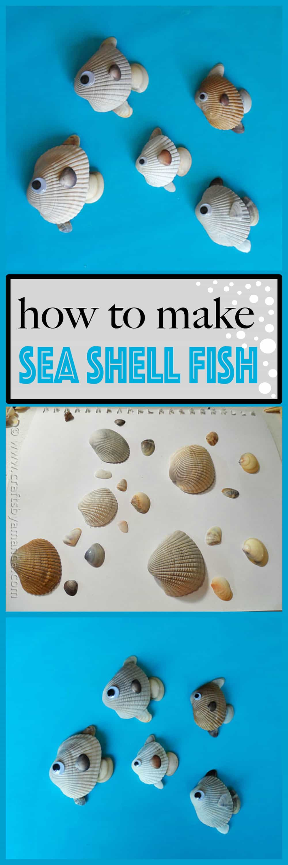 How to make seashell fish crafts by amanda for How to make fish
