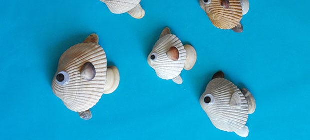 Seashell Fish