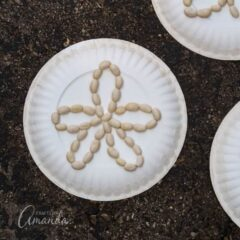 Easy and fun paper plate sand dollars, great for all ages.