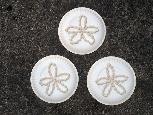sand dollar craft ideas paper plate sand dollars crafts by amanda 5361