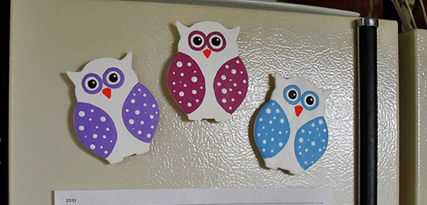 Polka Dotted Owl Magnets