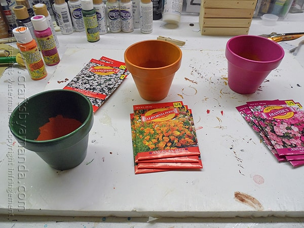 Coordinate the paint with the colors in the seed packets
