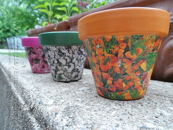 What a fun spring project! Decoupage clay pots with seed packets!