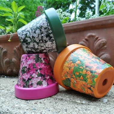 These decoupage clay pots are so cute! I need to get some seed packets :)