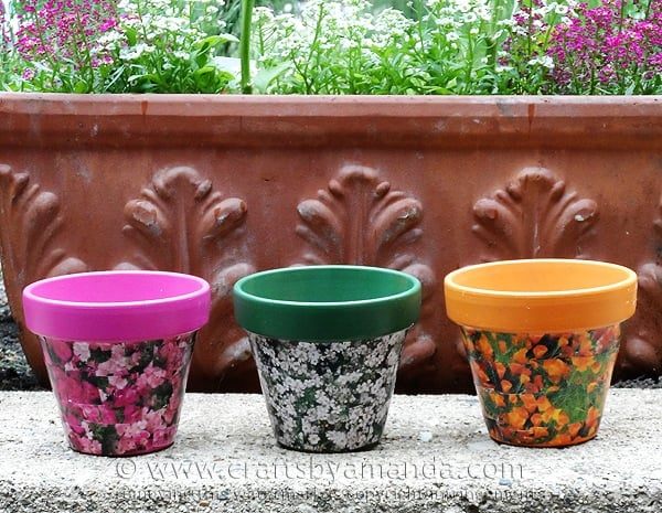 These decoupage clay pots use seed packets to decorate them, cute!