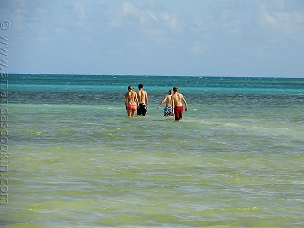 My kids walking in the ocean at Annie's Beach in Key Largo, FL Photo copyright protected