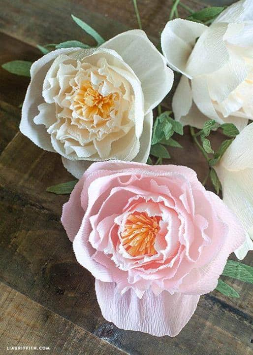 Crepe Paper Peonies - Lia Griffith