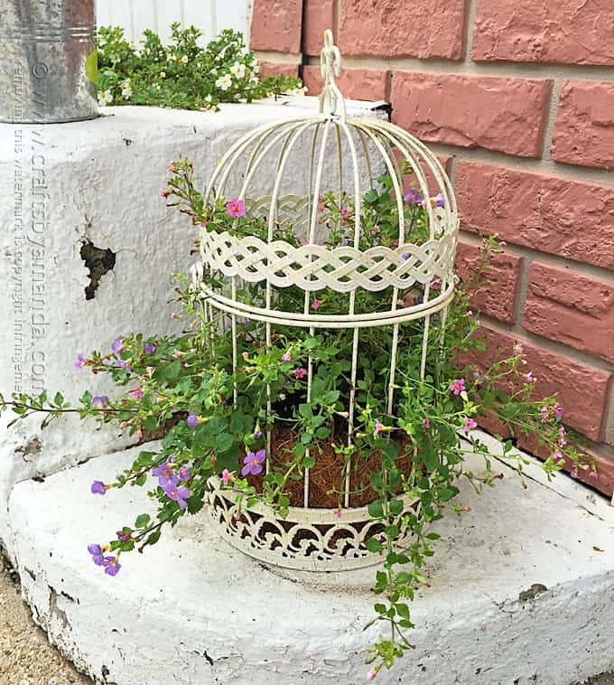 Halloween diy decor - Birdcage Flower Planter A Beautiful Way To Display Your Flowers