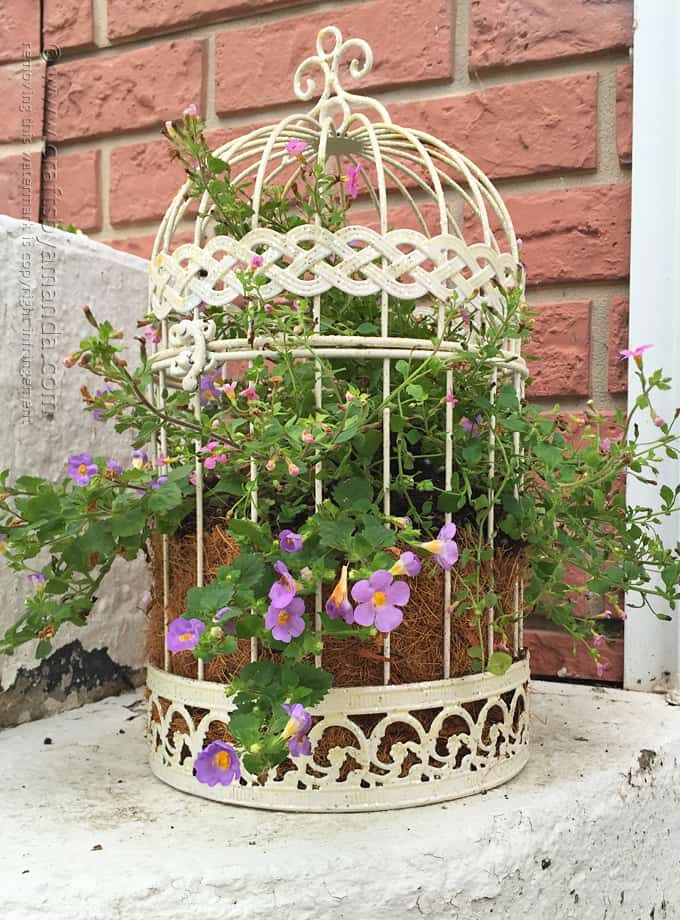 Birdcage flower planter a beautiful way to display your flowers - Birdcage Flower Planter A Beautiful Way To Display Your