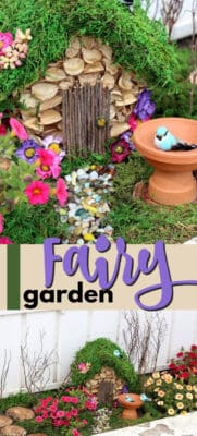 how to start a fairy garden pin image