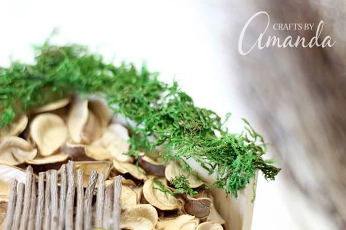 How to Start a Fairy Garden - Amanda Formaro, Crafts by Amanda