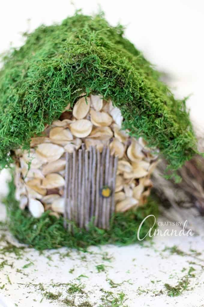 moss covered birdhouse