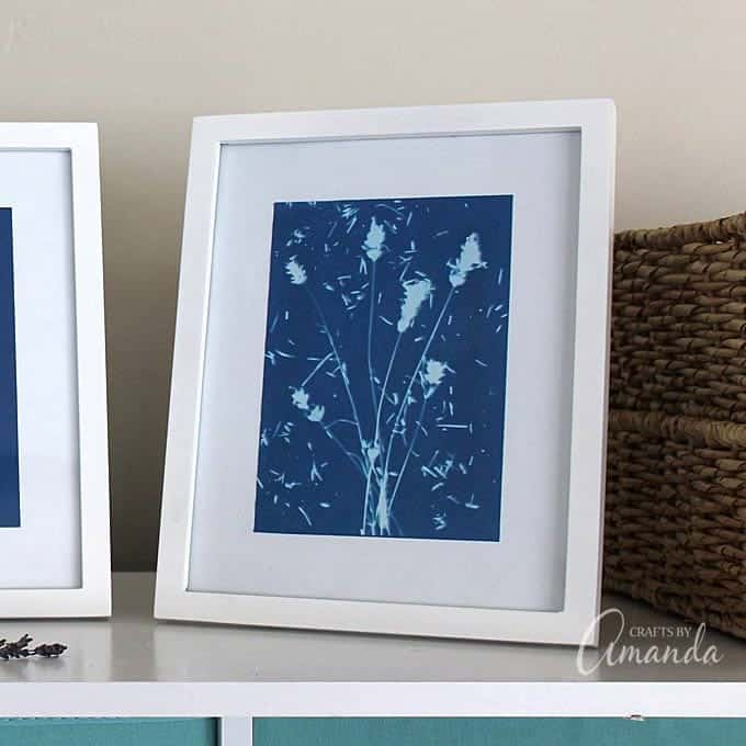 use sun print paper for home decor!