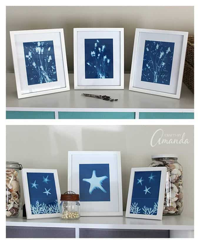 sun prints in frames collage