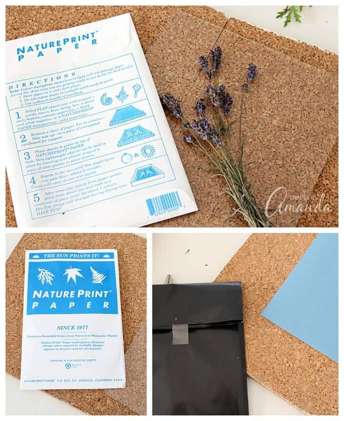 sun print paper how to use
