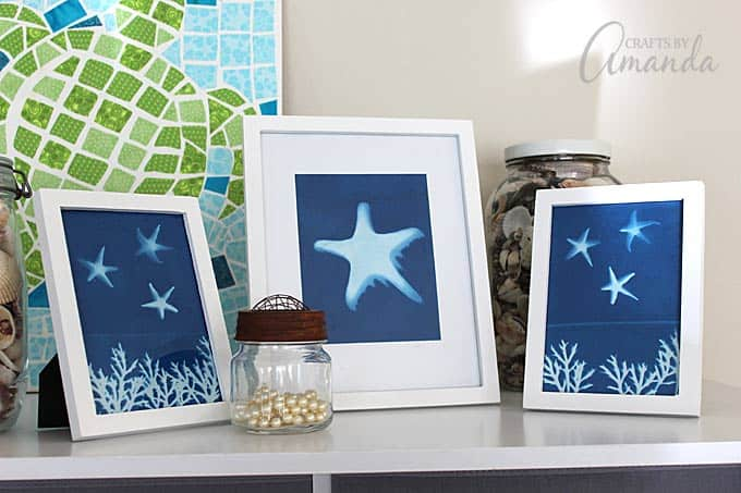 beach themed sun print frames