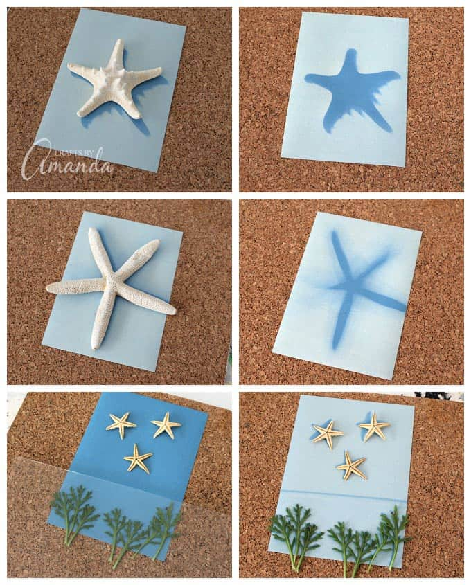 Use sun print paper to create wonderful wall art! This is an awesome project for kids to make and give as gifts to grown ups! Adults will love playing with sun print paper too!