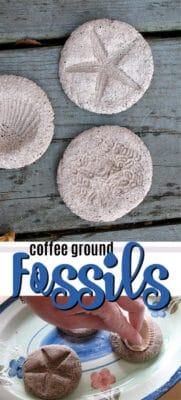 coffee ground fossils pin image