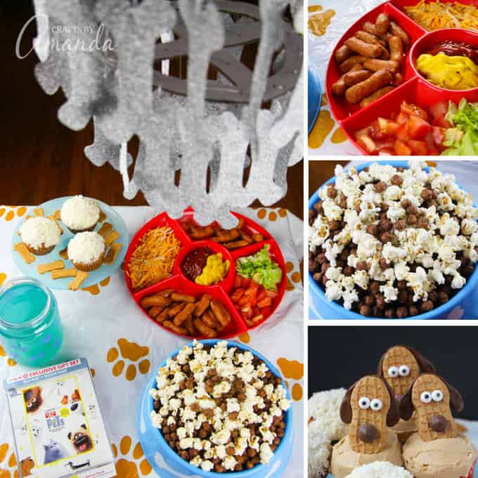 The Secret Life of Pets movie night party