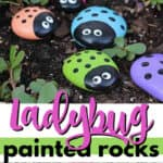 ladybug painted rocks pin image