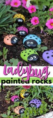 ladybug painted rocks pin image
