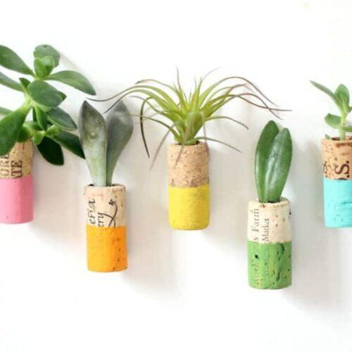 wine cork succulent planter magnets