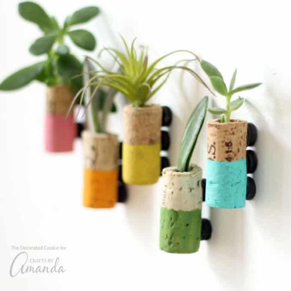 Wine Cork Succulent Magnets