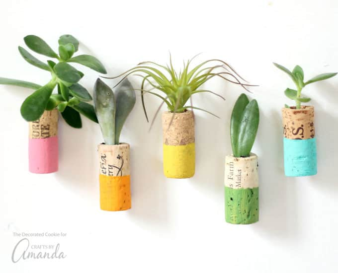 What better way to use my wine corks than to make these wine cork succulent magnets?