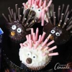 Porcupine Cupcakes and SING Movie Night