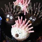 Porcupine Cupcakes and SING Movie Night