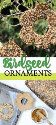 birdseed ornaments pin image