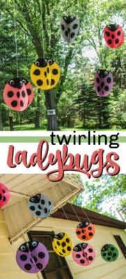 swirling twirling ladybugs pin image