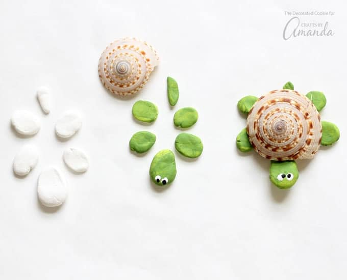 How to make sea shell creatures- turtle