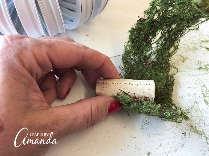 Wrapping moss around a cork